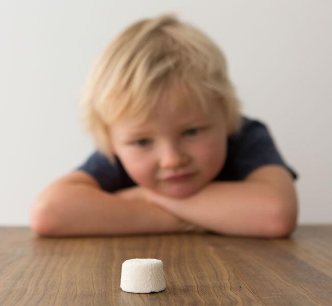 Self control - Marshmallow Test